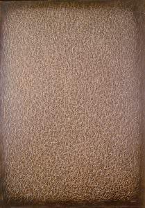 grattage marrone G.M. 81