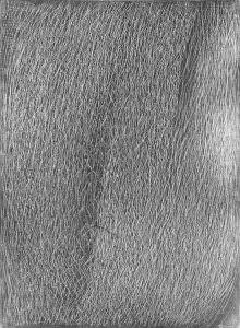 grattage grigio 634